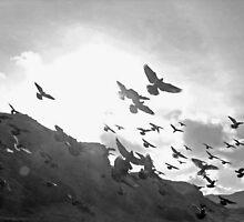 Beautiful rats wi wings by Pamela Baker