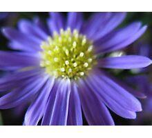 Purple Neon Photographic Print