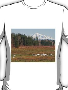 Mt Baker and Swans T-Shirt