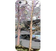 Polarisings - Loch Eck Dreaming iPhone Case/Skin
