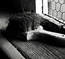 Old Brush by Sherrie Chavez