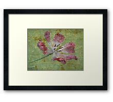 Open - JUSTART ©  Framed Print