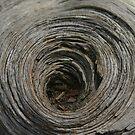 Dead Wood by T Powers