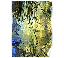 Blue Yellow Willow Water Poster