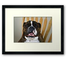 Can I get down now? Framed Print