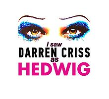 I saw Darren Criss as Hedwig by LauraWoollin