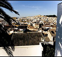 Antequera Palma by zoopsia