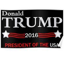 Donald Trump 2016 Election Poster