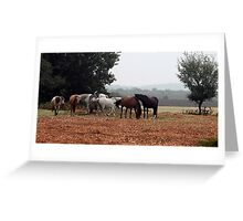 New Forest Ponies of Hampshire England Greeting Card