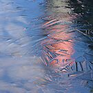 Reflection on Thin Ice by murrstevens