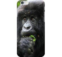 Juvenile Mountain Gorilla Eating, Kwitonda Group, Rwanda, East Africa  iPhone Case/Skin