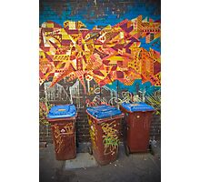 Croft Alley Bins Photographic Print
