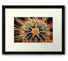 Star is Born Framed Print