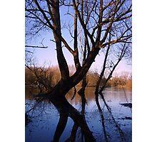 Blue & Gold ~ Park Street, Hertfordshire 2010 Photographic Print