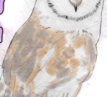Everyone is fond of owls Sticker