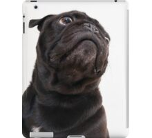Black funny pug iPad Case/Skin