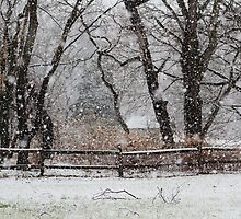 Snowy Day in the Park by Gilda Axelrod