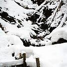 Snowy Stream by mjds