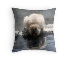 Monkey Sip Throw Pillow