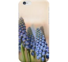 Ringing in Spring iPhone Case/Skin