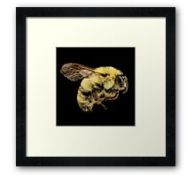 Bees Are Cute Framed Print