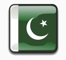Pakistani Flag, Pakistan Icon by tshirtdesign