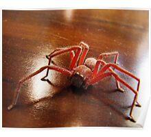 Creepy Spider (Arachnid) Poster