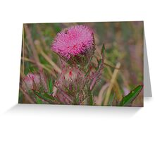 Horrible Thistle Greeting Card