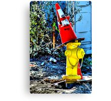 A Jaunty Witch's Cap Canvas Print