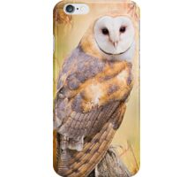 The Wise Owl iPhone Case/Skin
