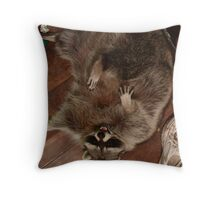 Raccoon Rampage Throw Pillow