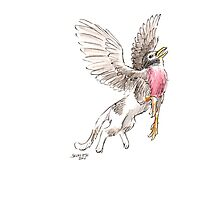 Sketch -- Mythological House Griffin: Robin Variety Photographic Print