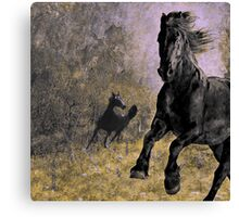 Horse 9 Canvas Print
