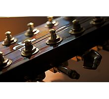 12 string Photographic Print