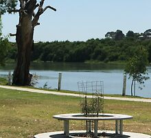 The River Murray Resting Spot by ScenerybyDesign