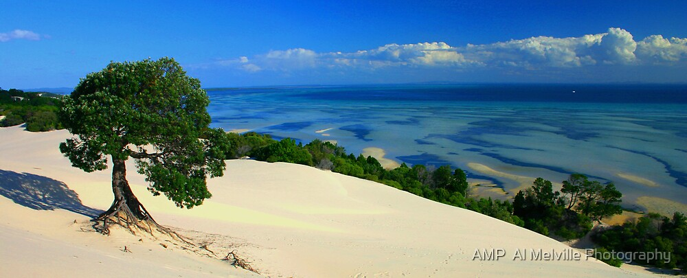 Moreton Island Paradise - Queensland Australia by AMP  Al Melville Photography