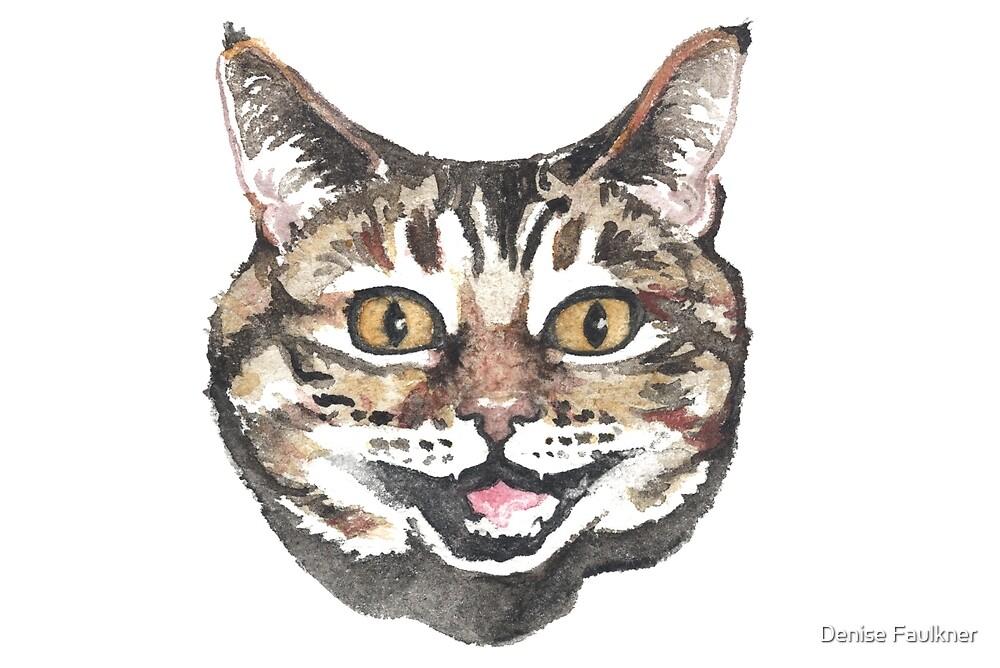 Cheshire Cat By Denise Faulkner Redbubble