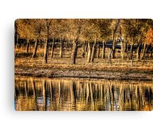 Line Em Up Canvas Print