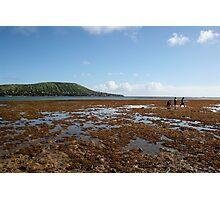 Tide pools and sandbars Photographic Print