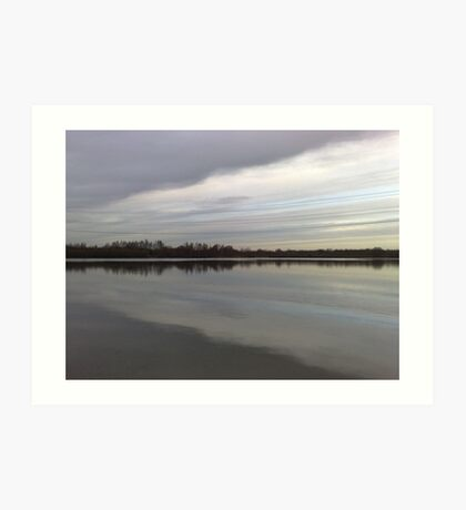 Whisby Nature Park Art Print