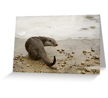 The Otter Greeting Card