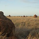 Termite Town by Denny0976