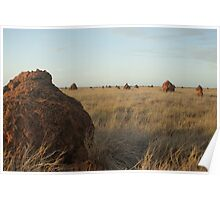 Termite Town Poster