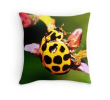 Pretty Ladybug Throw Pillow
