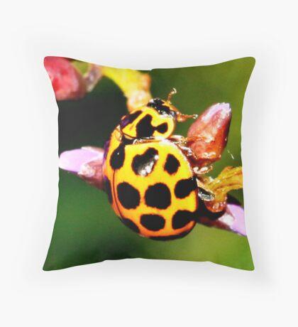 Pretty Ladybug Throw Pillow