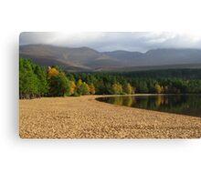 Loch Morlich Treeline Canvas Print