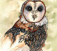 Barn Owl Watercolor - Heather Lynn White by heatherwhiteart