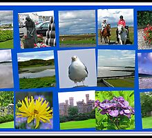 Postcards from the Western Isles - Scottish Collage by BlueMoonRose