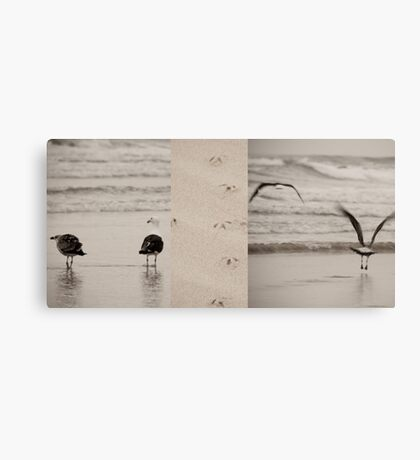 Fight or Flight reconsidered Canvas Print
