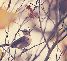 Little Bird on a Tree Branch by Jamie Stryker